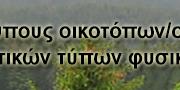Ypeka_database_icon